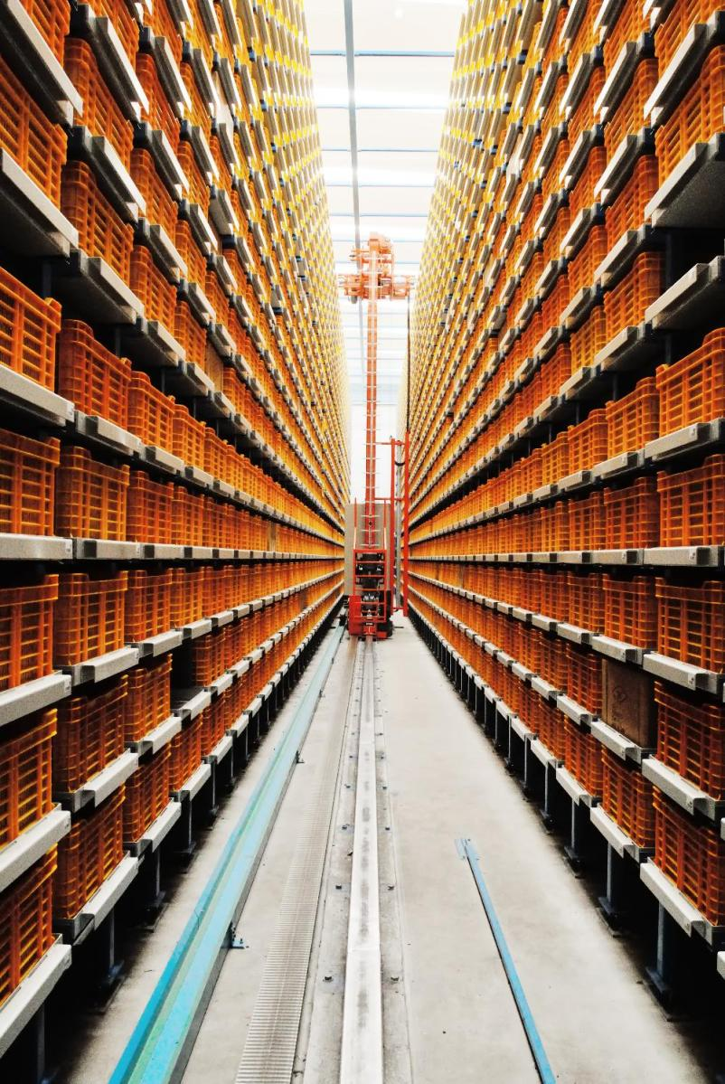 Automated Storage And Retrieval Systems Techmark Storage